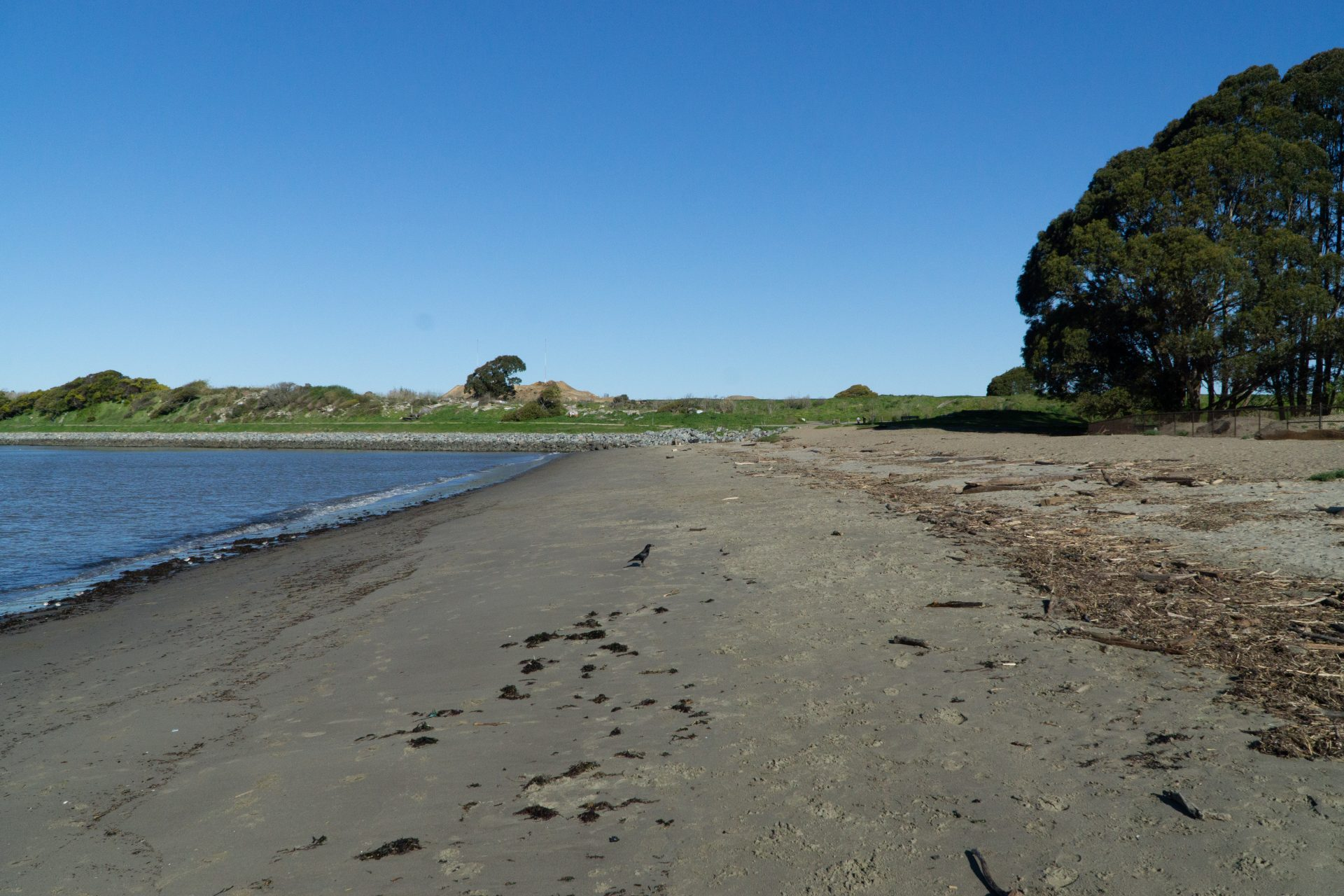 dark gray sandy beach, bay on left and grassy meadow beyond