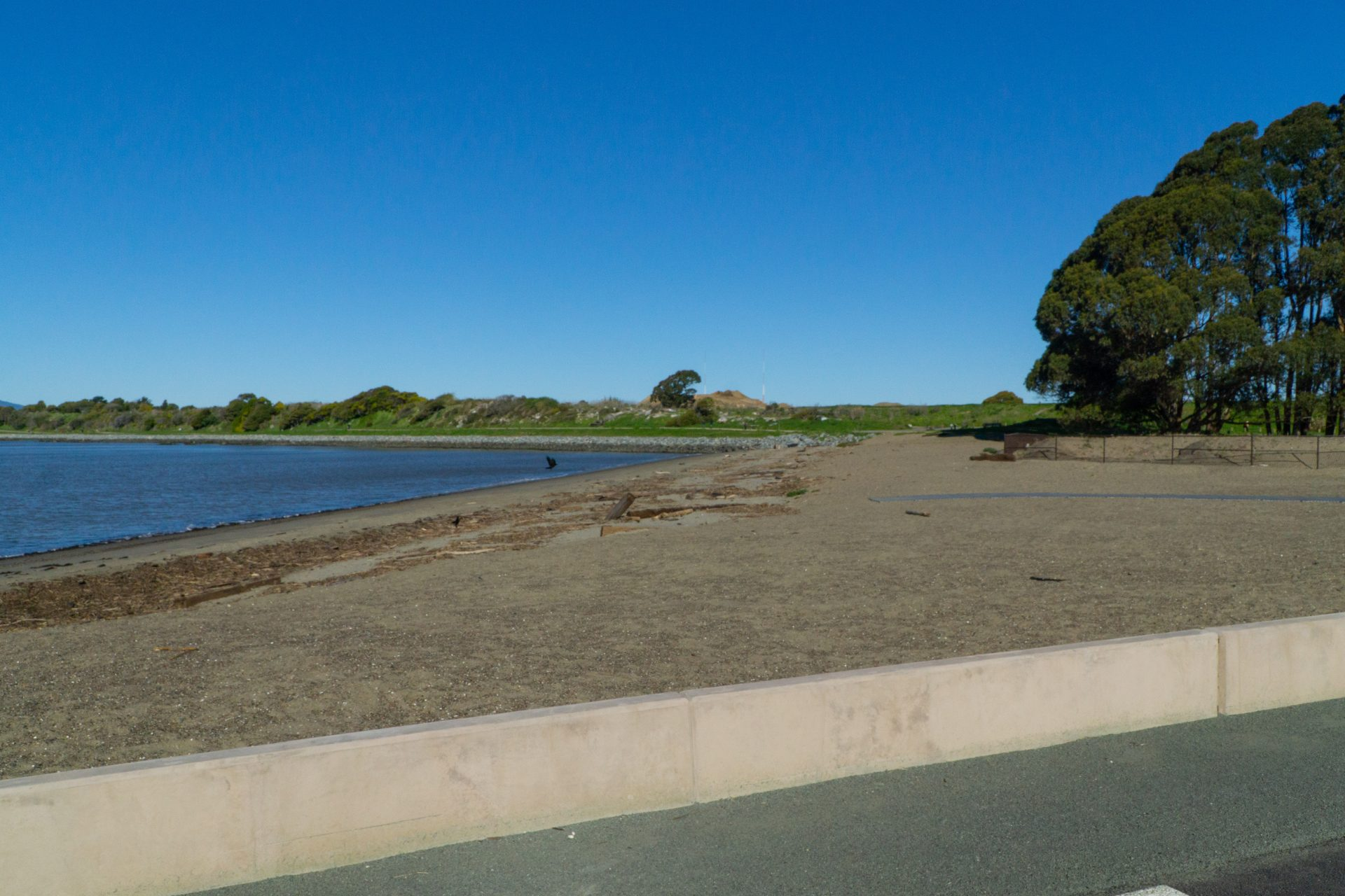 concrete wall and sandy beach, bay, green grass and trees