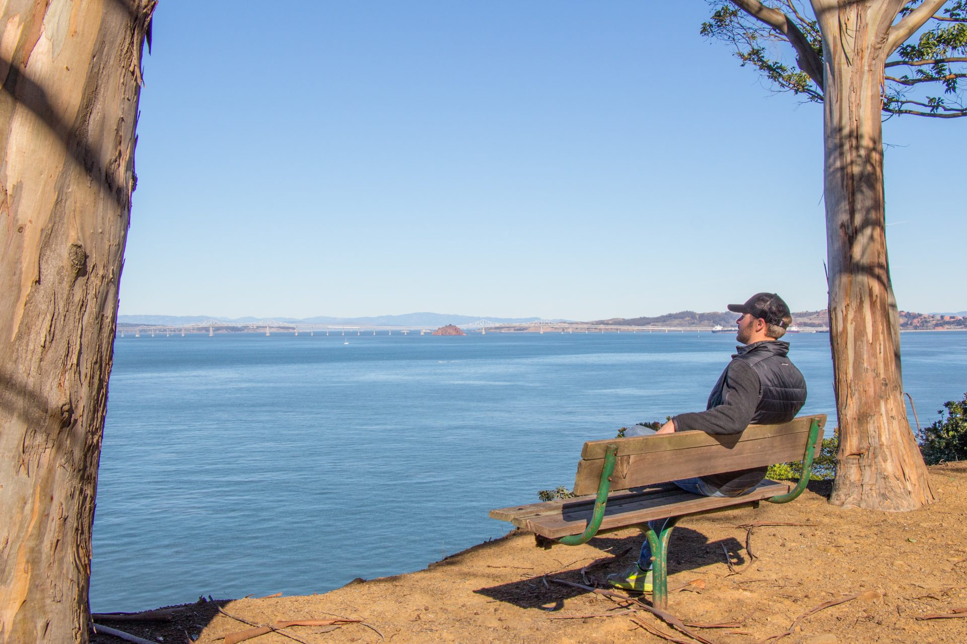 Bearded man in baseball hat sitting on bench overlooking SF Bay