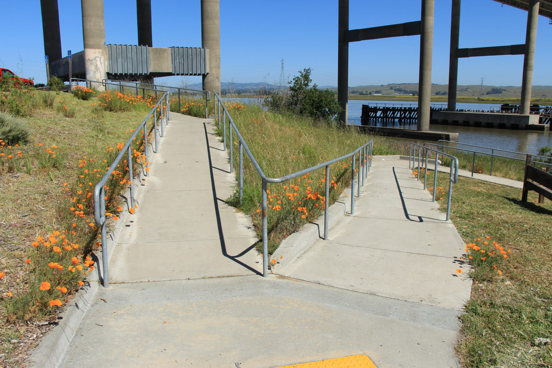 Paved ramp descending hillside, with poppies blooming