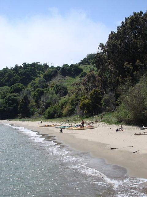 sandy beach, kayaks pulled ashore and trees beyond