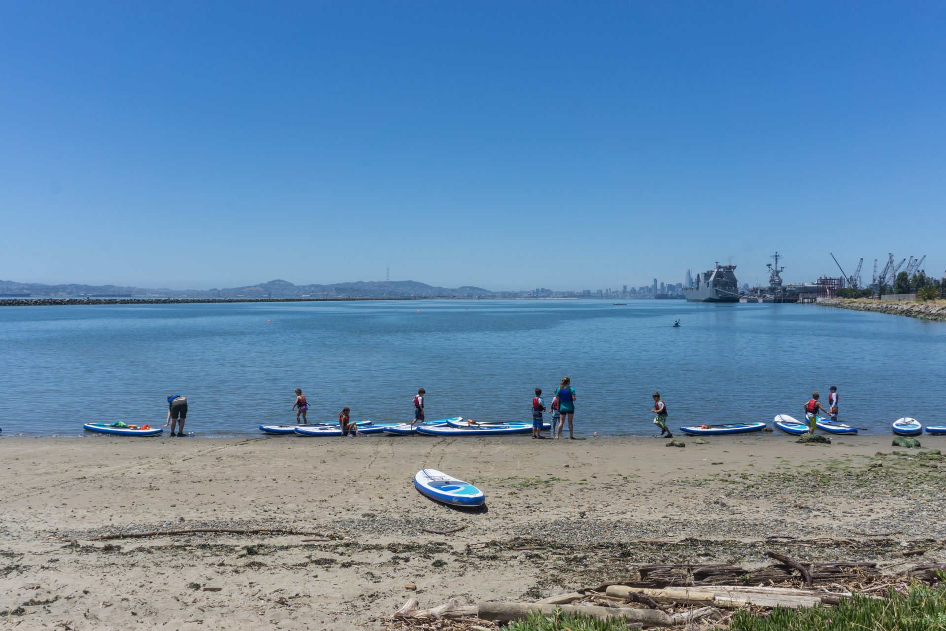 standup paddle board lined up along water's edge, with people standing around them