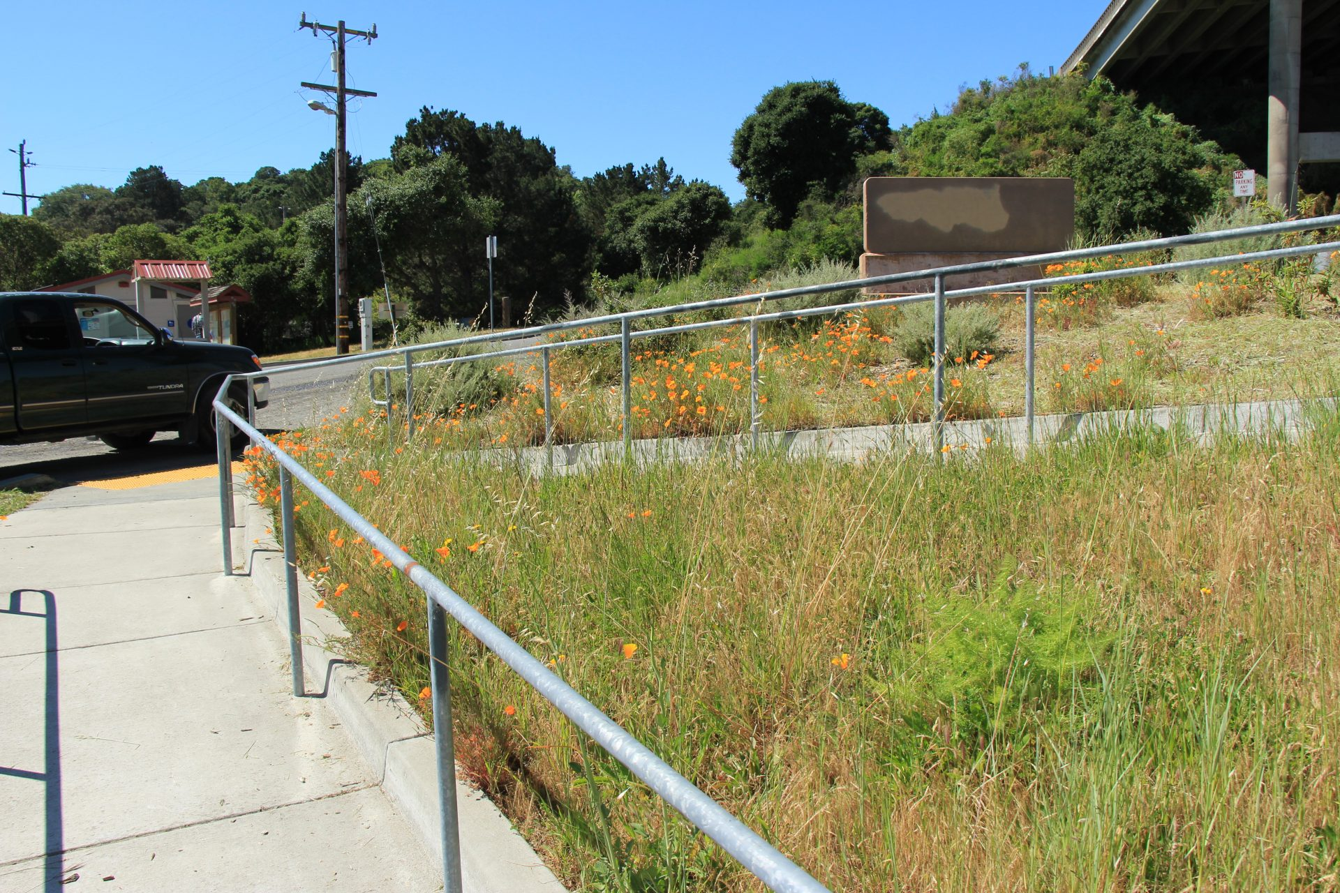 View of metal railing alongside of paved path