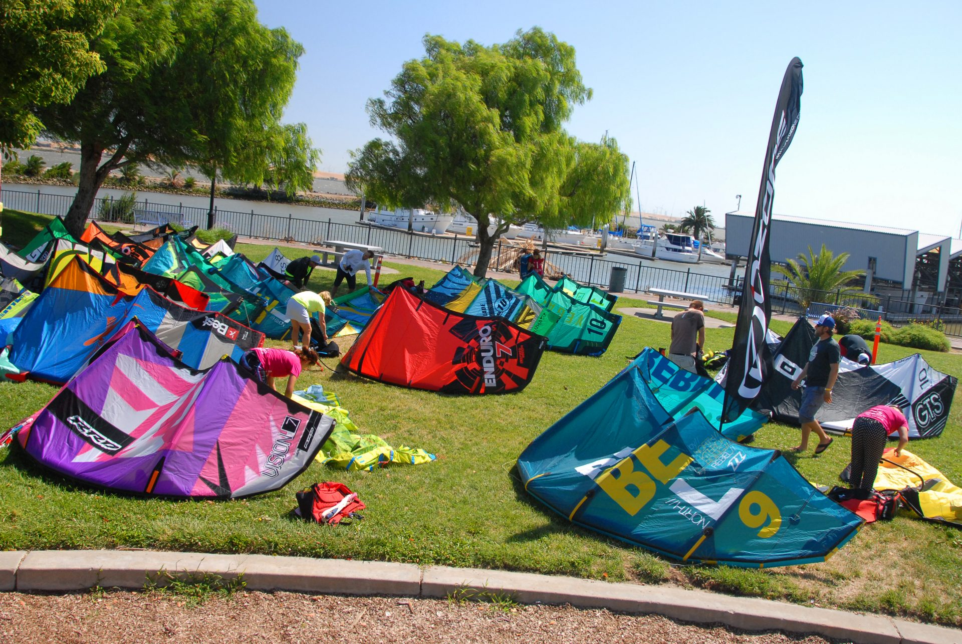 colorful kites for kiteboarding arrayed on grass
