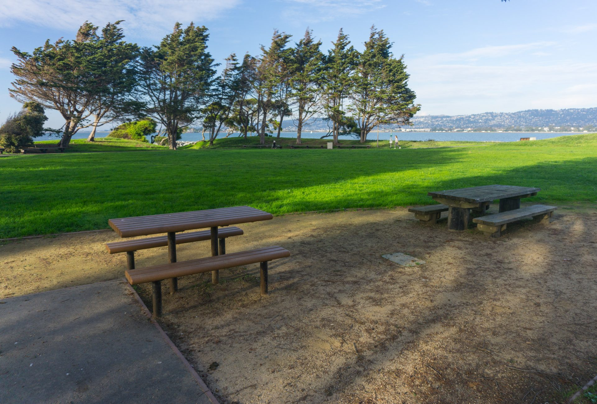 picnic benches in foreground, green lawn and trees beyond