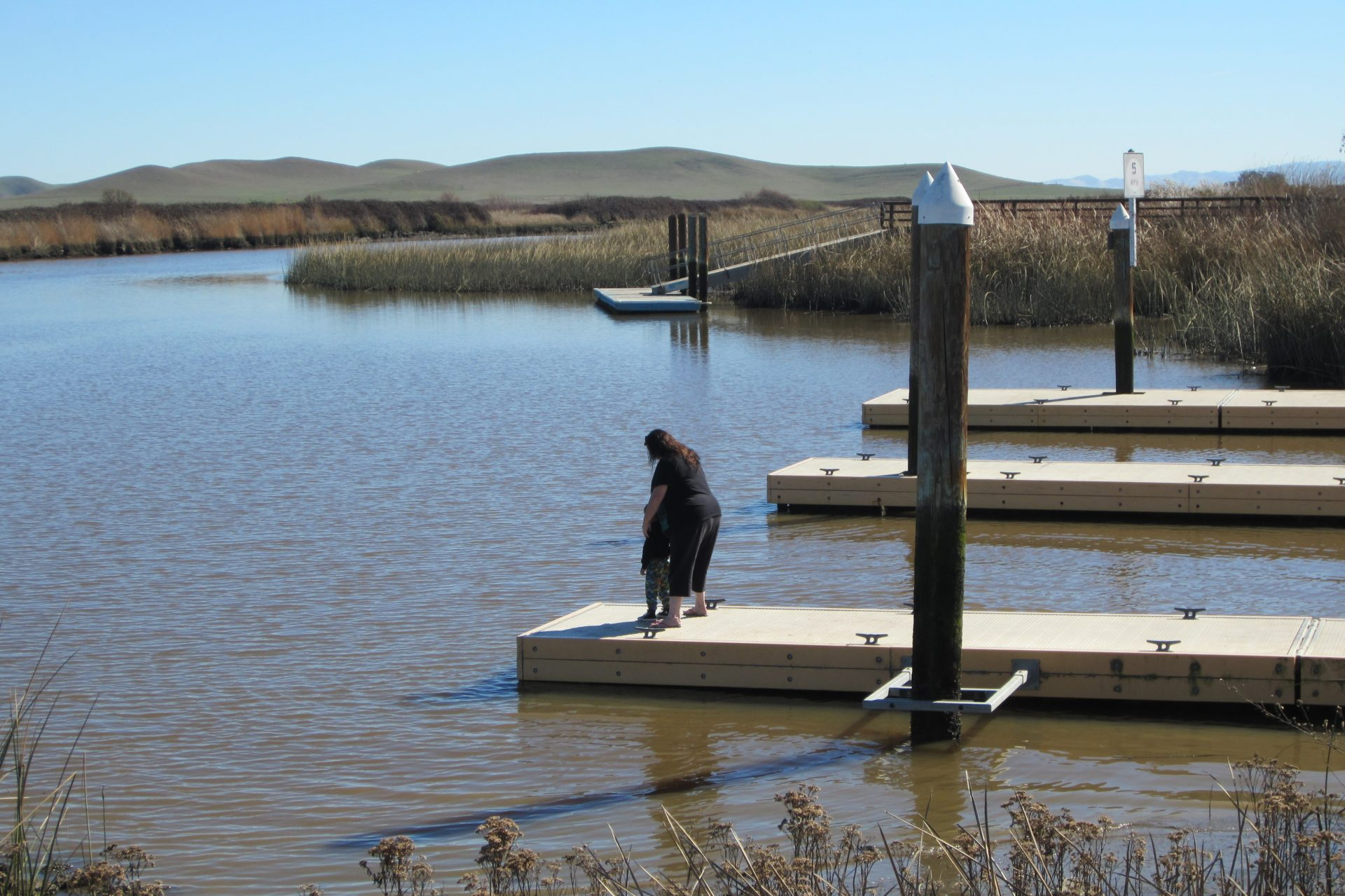 Woman and child on floating dock, with marsh grasses in distance