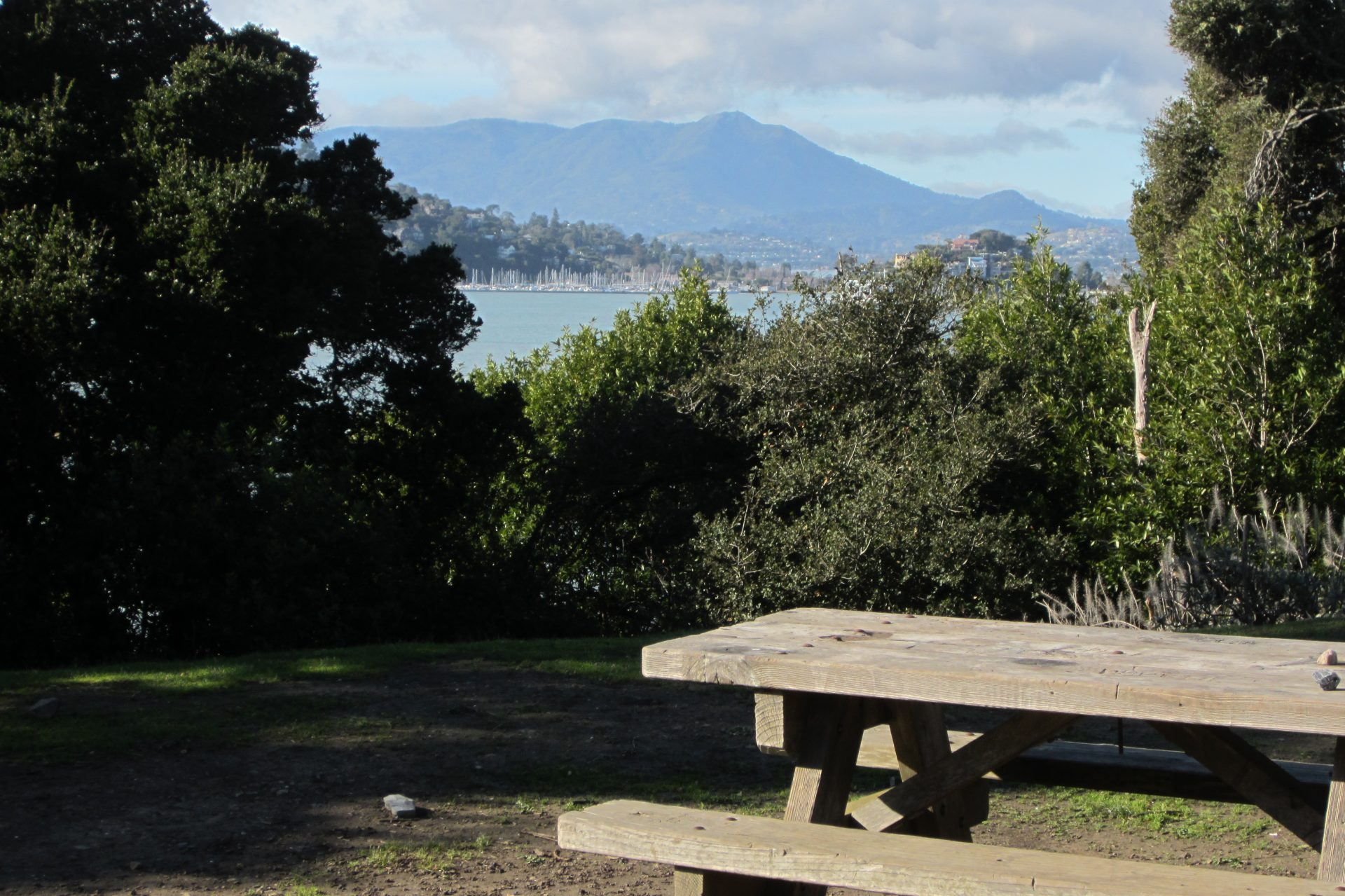 View of Mount Tamalpais from picnic tables
