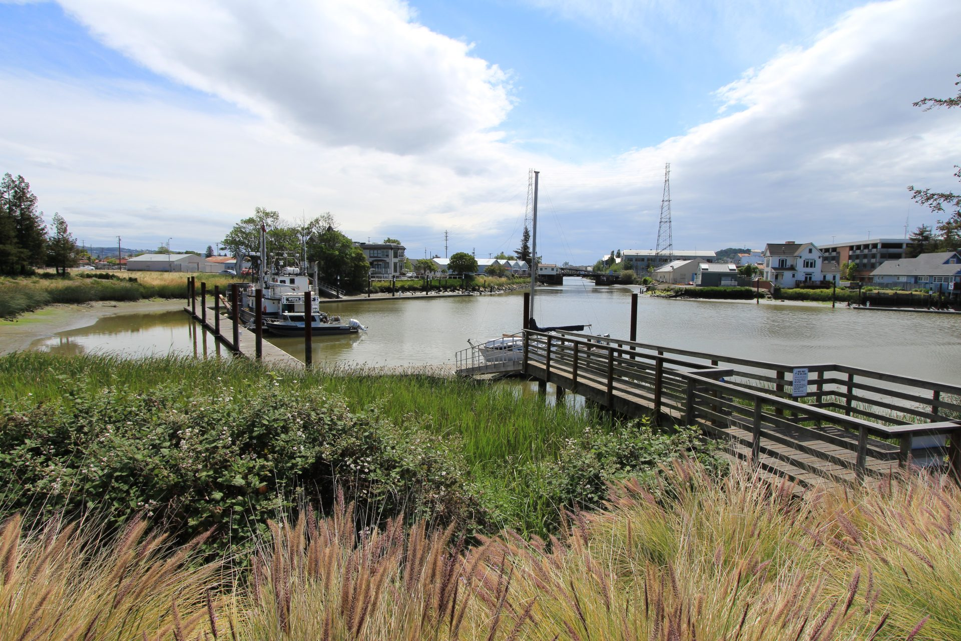 Marsh plants in foreground, wooden walkway on right, river and boats in distance