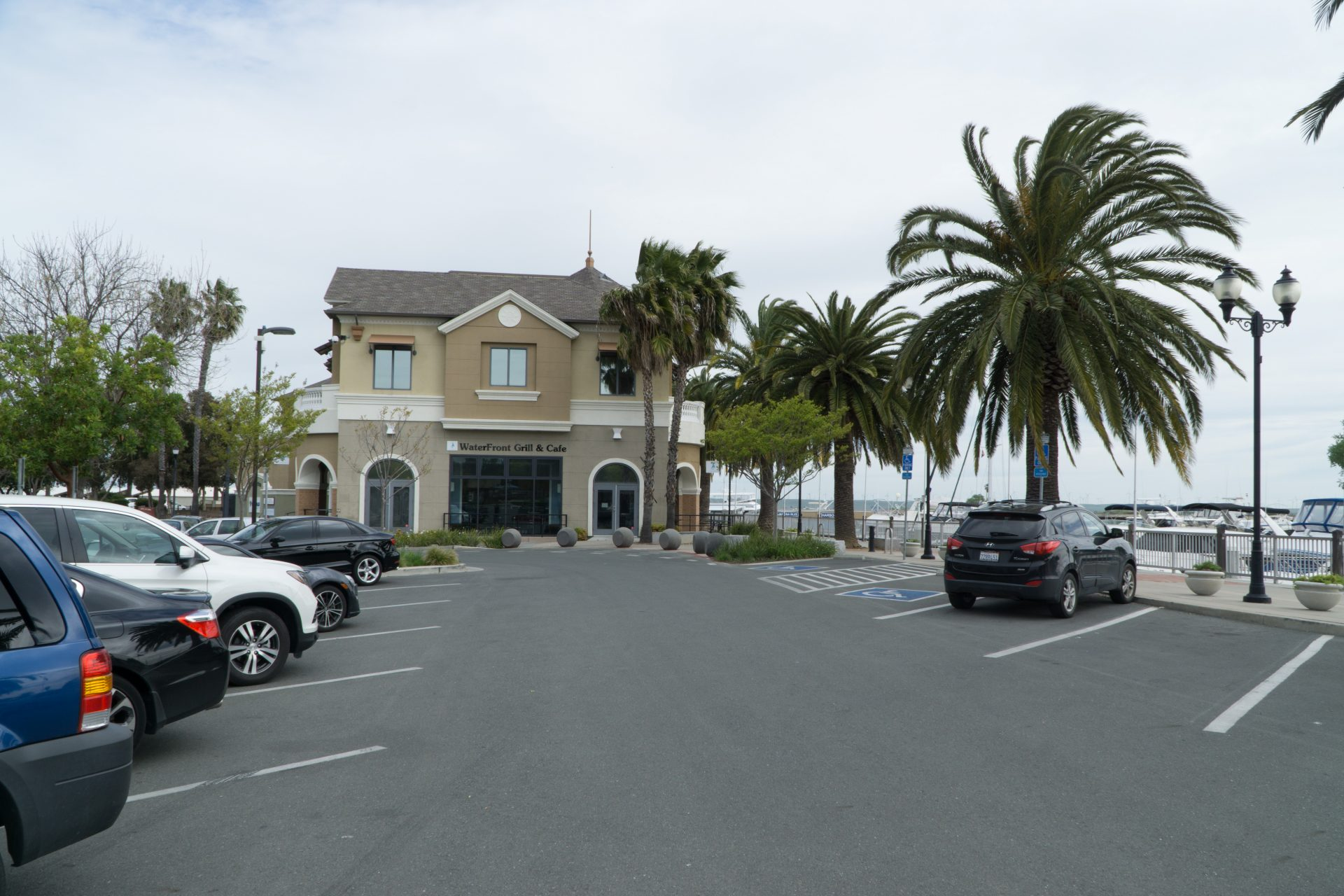 parking lot and palm trees