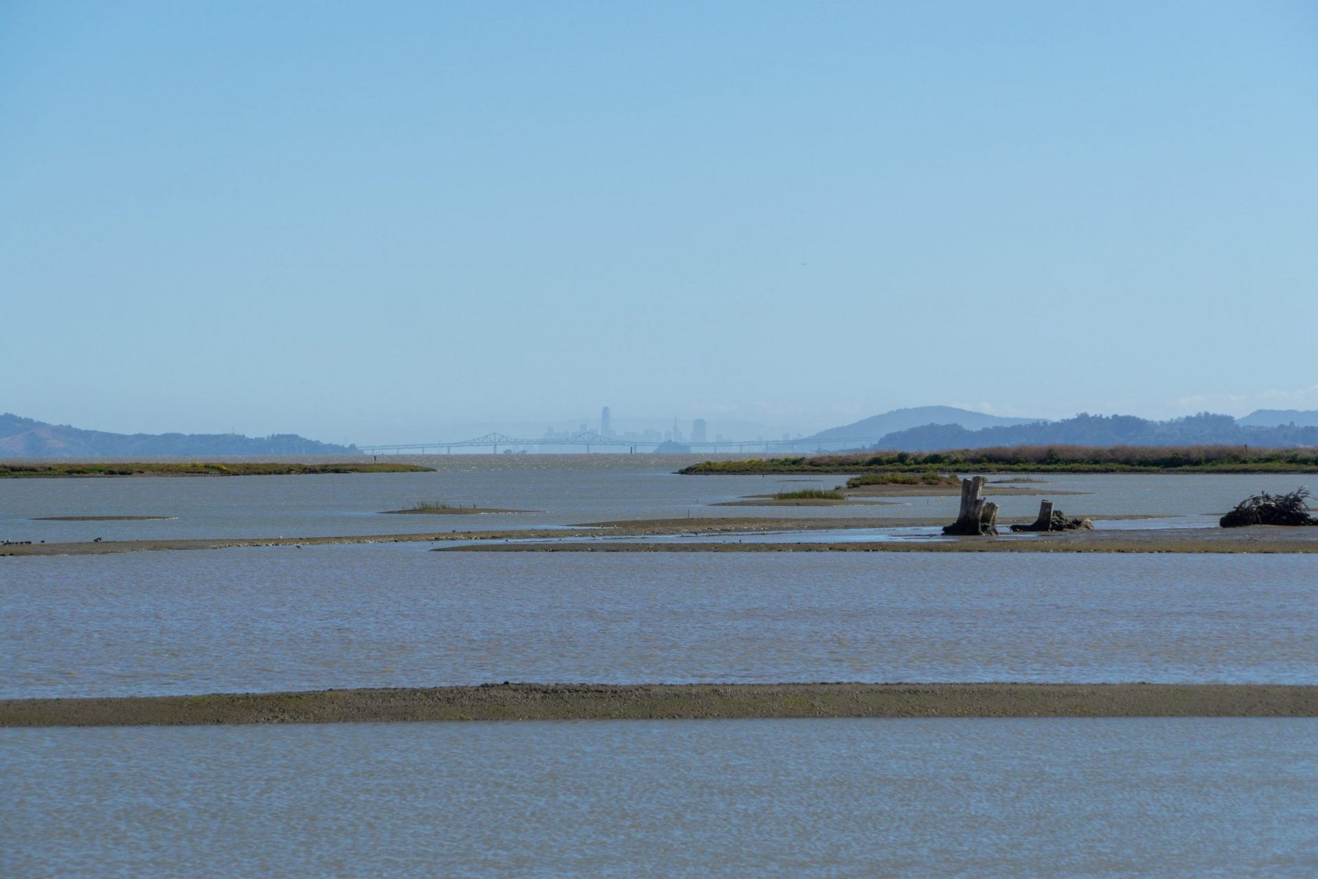 mud flat and bay with San Francisco in far distance