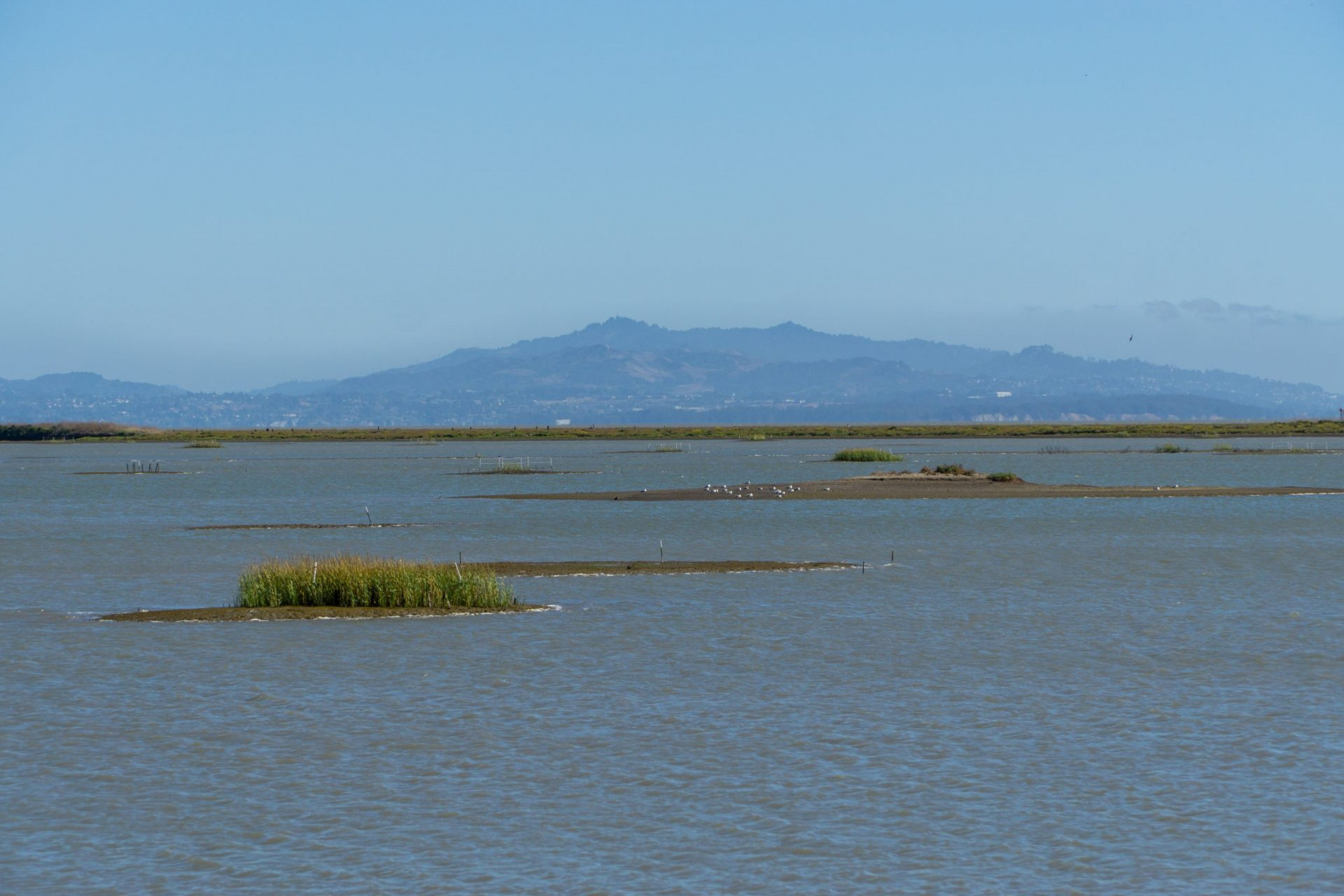 mud flats and bay with hills across the water
