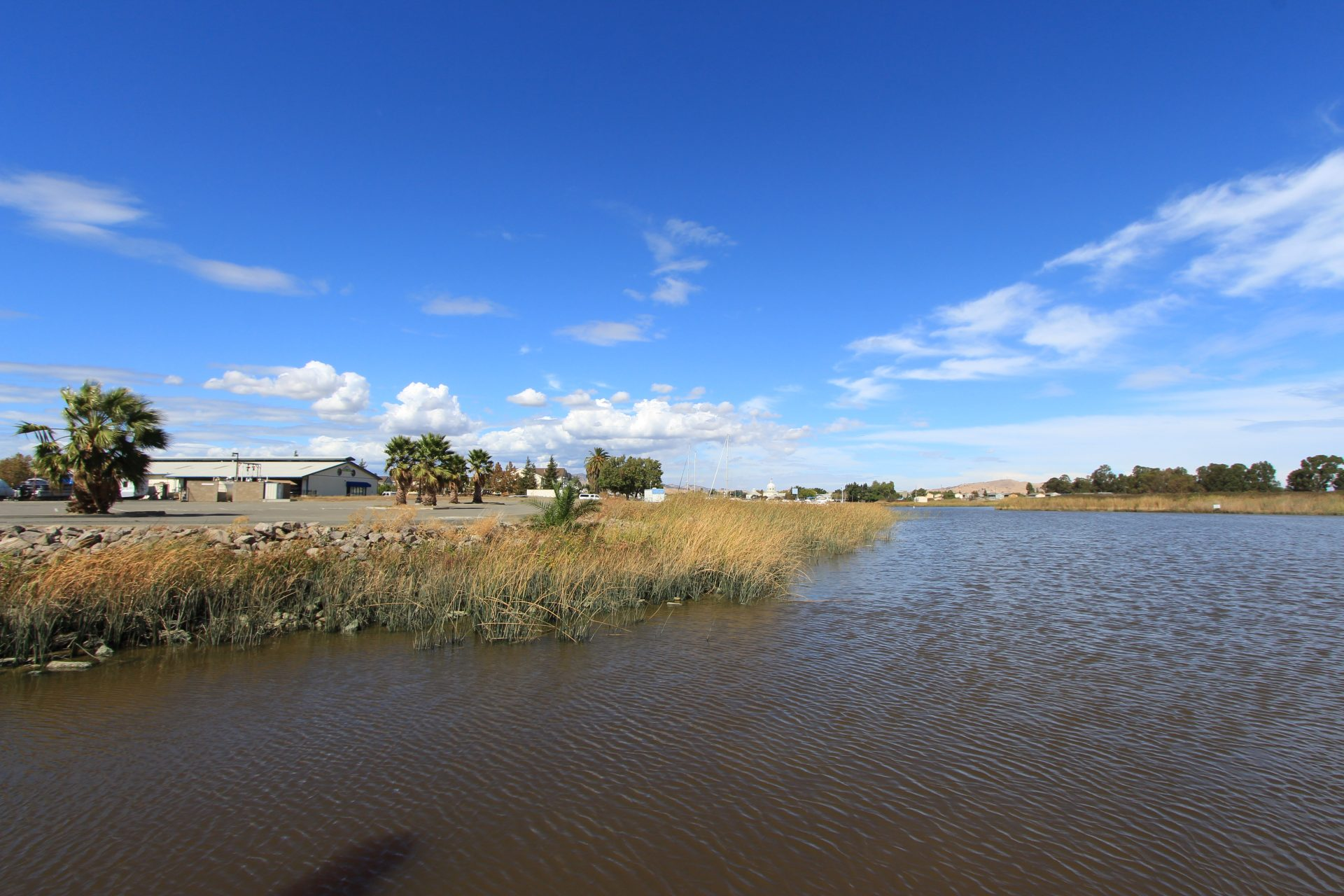 water rippling in wind, marshgrasses and blue cloud-dotted sky beyond