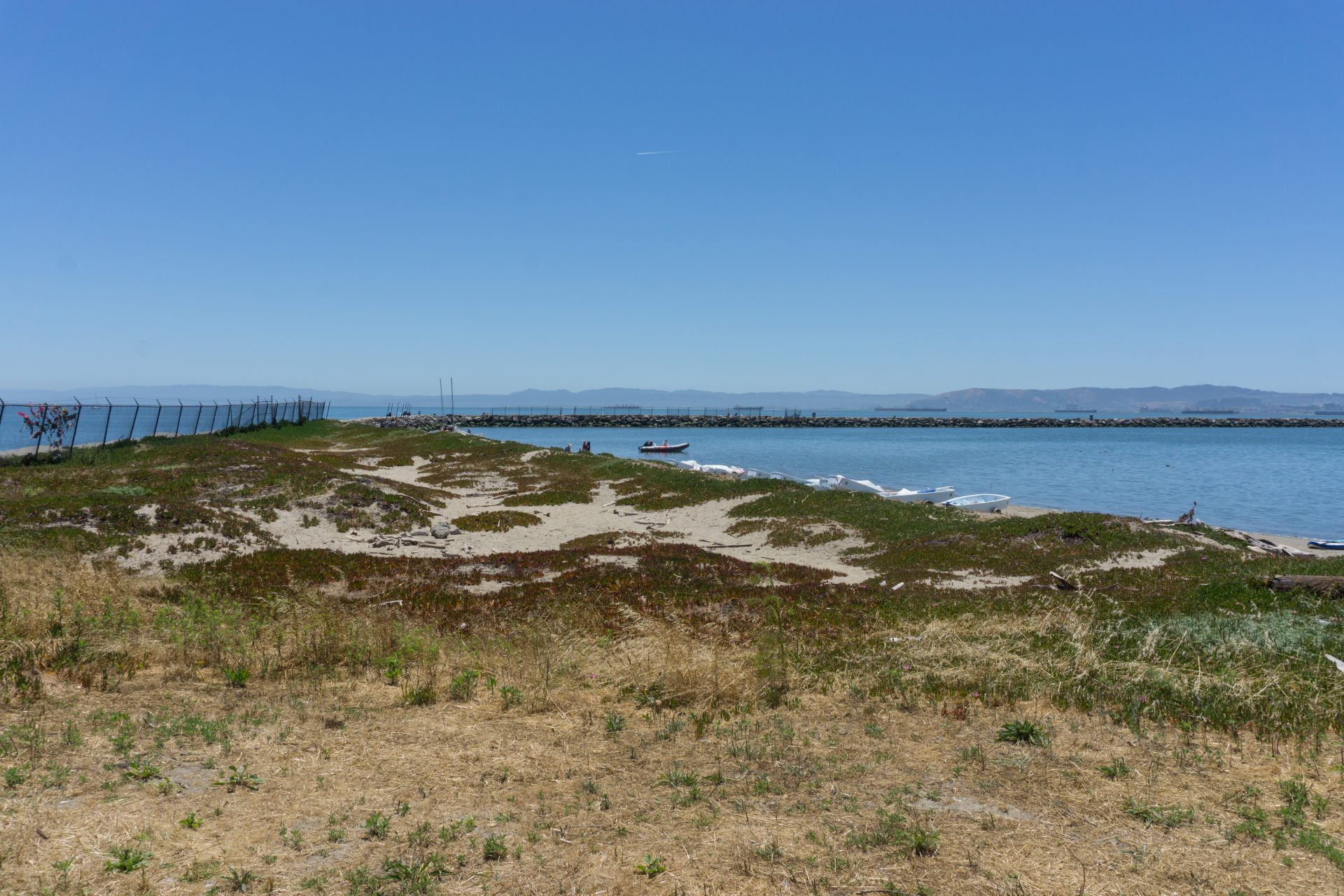 Sandy dunes covered in iceplant, beach on right withdingies pulled ashore
