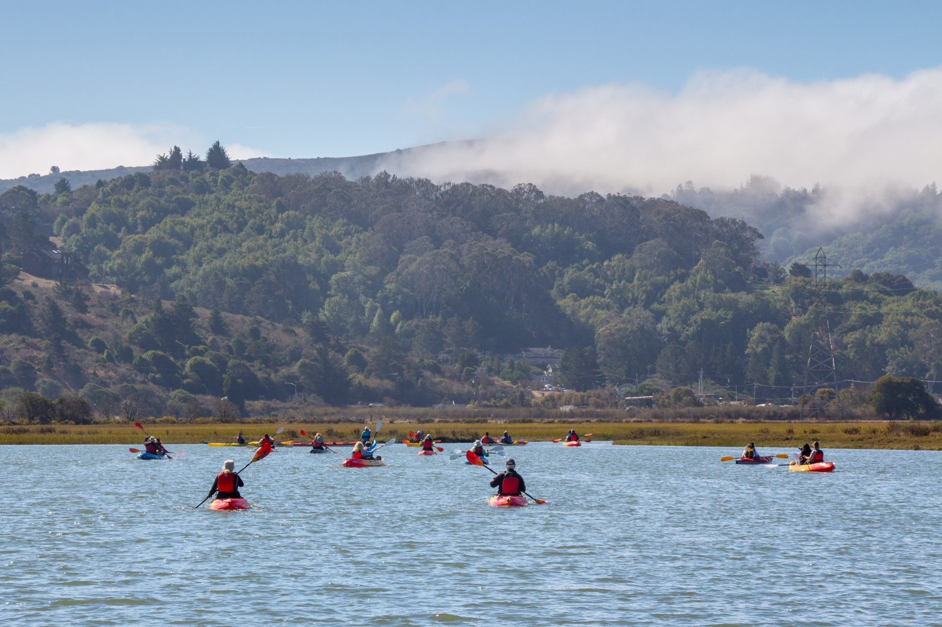 large group of kayakers in distance, forested hillsides and fog beyond