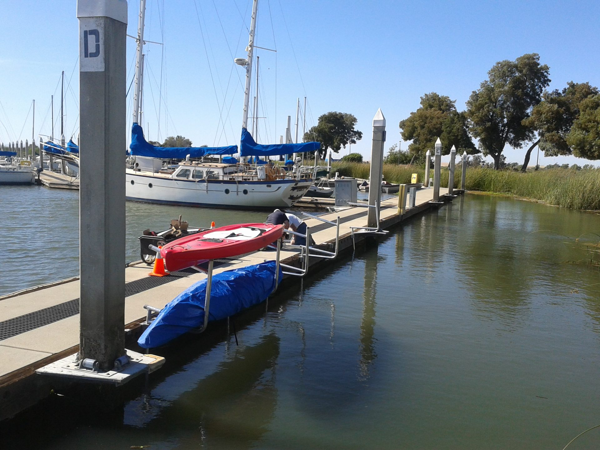 red and blue kayaks in racks, sailboat beyond