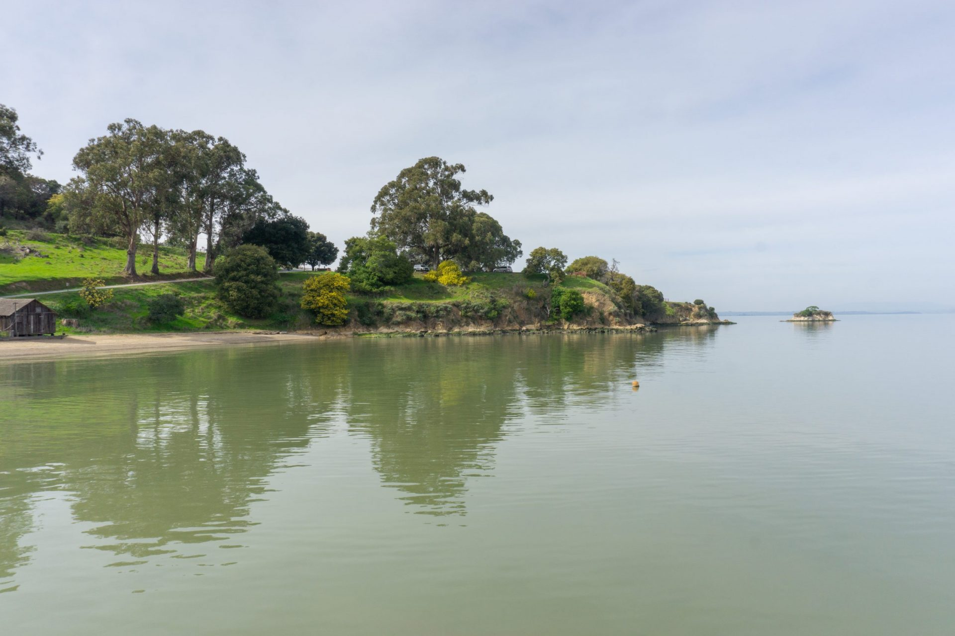 green trees and grassy hills descending into bay water