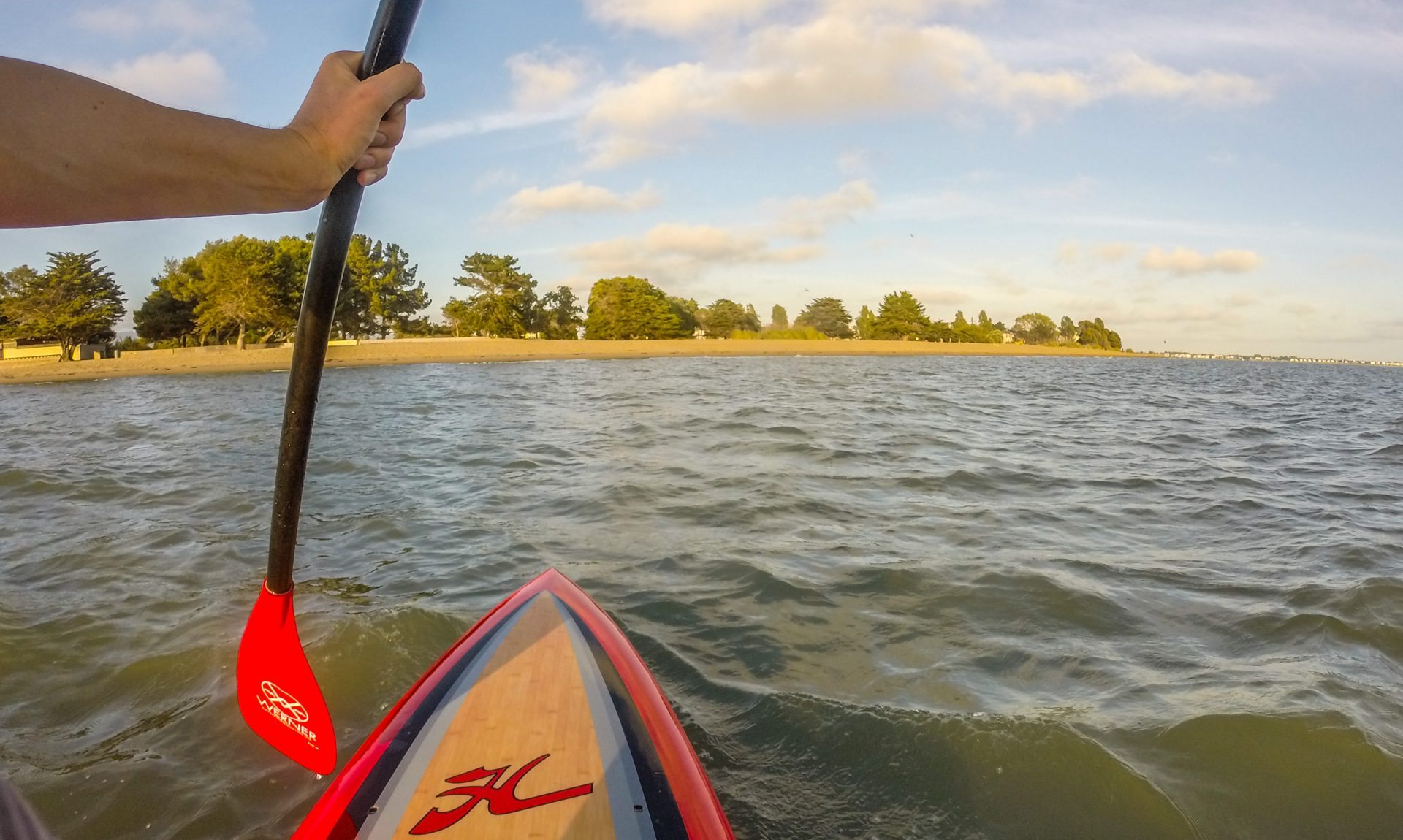 Paddler's view from the water, with arm and paddle, looking to beach and trees beyond