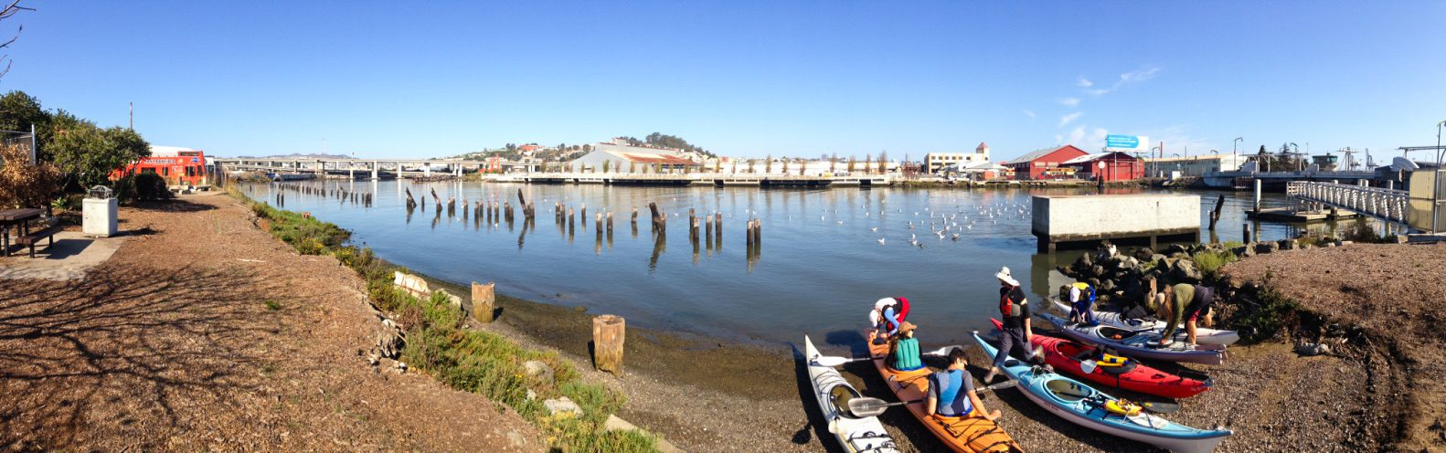 Group of kayakers pulled ashore on small pebbly beach, with rows of rotted pilings offshore