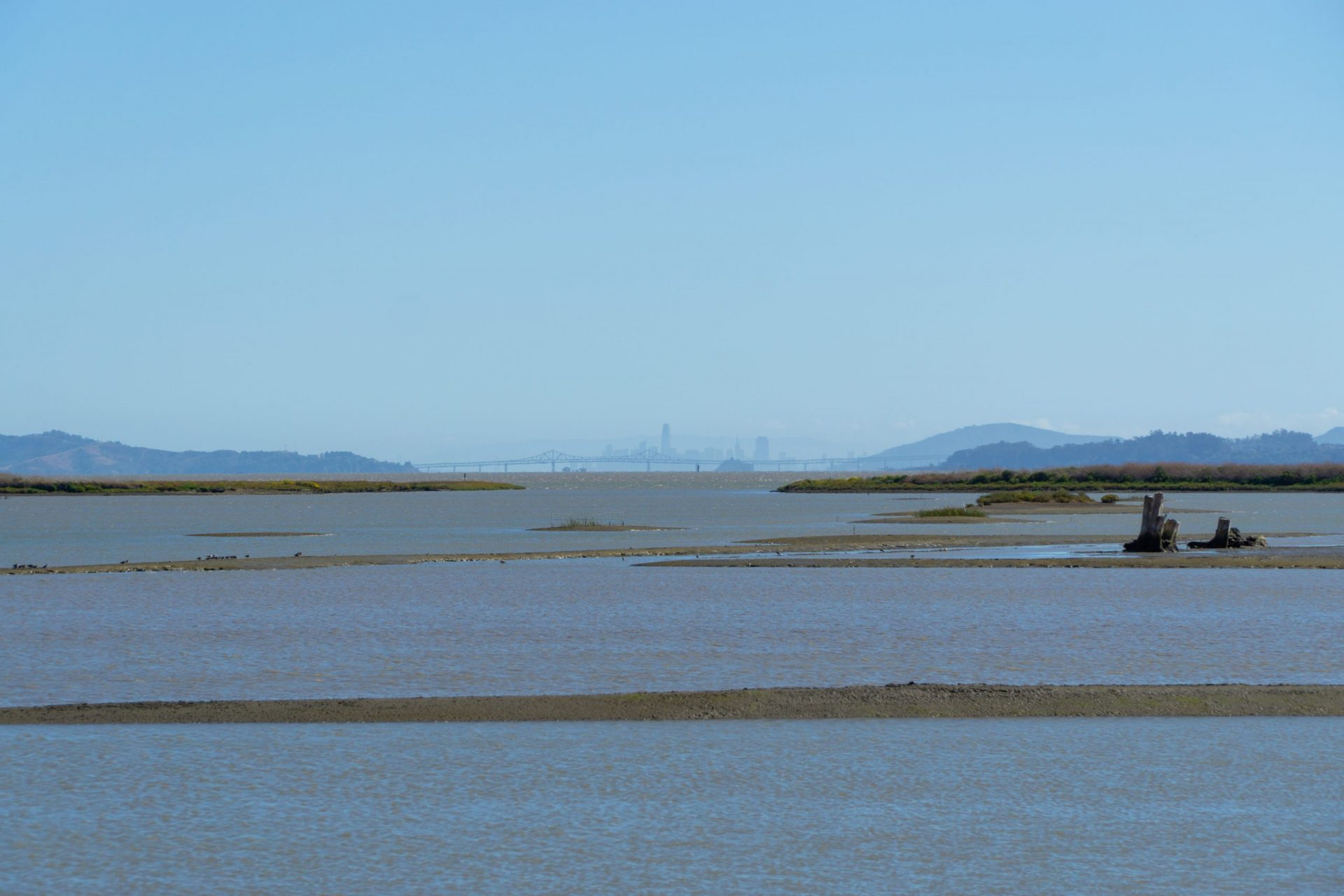 mud flats and bay with San Francisco in the far distance